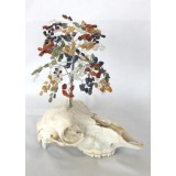 Chakra Balacing Skull Tree of Life 300 Chip